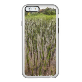 Rice fields and water incipio feather® shine iPhone 6 case