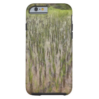 Rice fields and water tough iPhone 6 case
