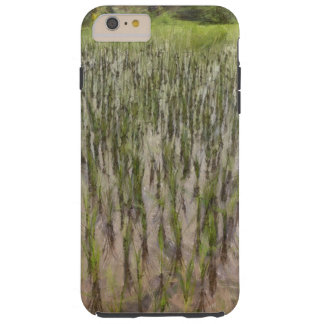Rice fields and water tough iPhone 6 plus case