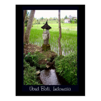 Rice Paddy, Temple, Ubud Bali, Indonesia Postcard