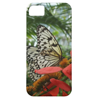 Rice Paper Wings iPhone 5 Cases