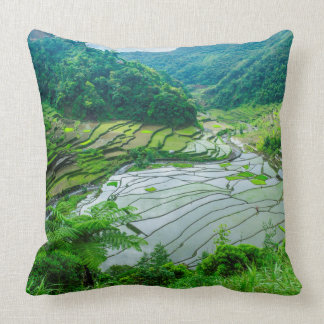 Rice terrace landscape, Philippines Cushion
