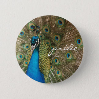 "Rich Color Photo of Peacock with ""Pride"" Message 6 Cm Round Badge"