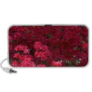 Rich Deep Springtime Color Notebook Speakers