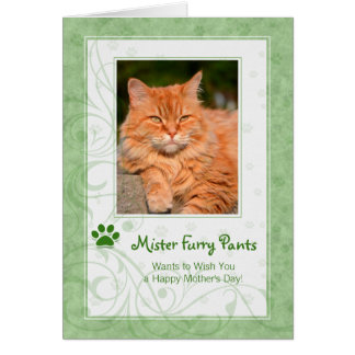 Rich Green From the Cat Mother's Day Photo Greeting Card