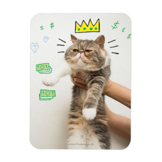 Rich King Cat Magnet