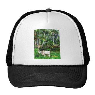 Rich Pature Trucker Hat