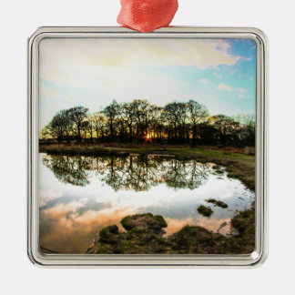Richmond Park, London Christmas Ornament