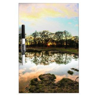 Richmond Park, London Dry Erase Board