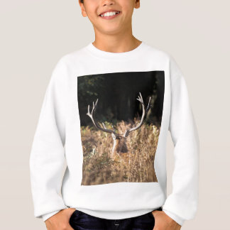 Richmond Park stag, London Sweatshirt