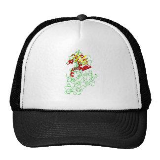 Ricin Trucker Hat