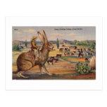 Ride'm Bunny! Postcard