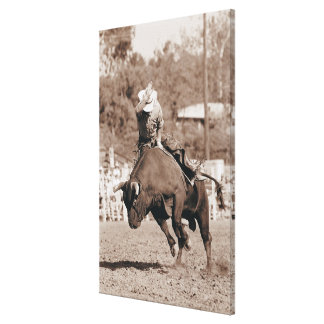 Rider about to fall off bucking bull canvas print