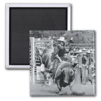 Rider hanging on to bucking bull magnet