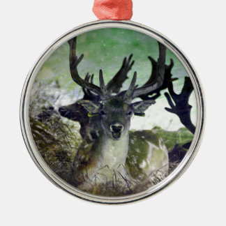 Ridiculously Photogenic Deer Christmas Ornament