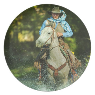 Riding horse through water plate