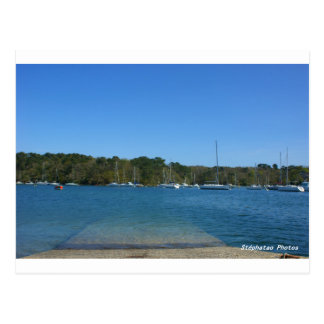 Riec on Belon oyster BRITTANY FRANCE Postcard
