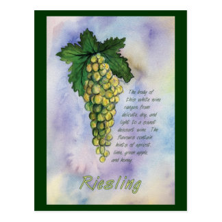 Riesling White Wine Grapes Postcard