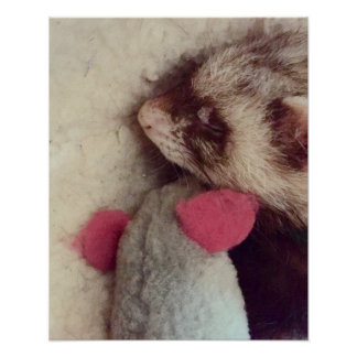 Right By My Side Ferret Poster