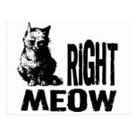 Right MEOW! Funny Evil Kitty