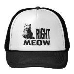 Right MEOW! Funny Evil Kitty Cap