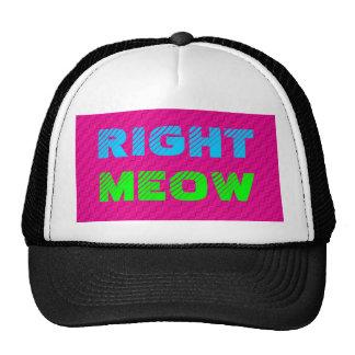 Right Meow Snapback Trucker Hat