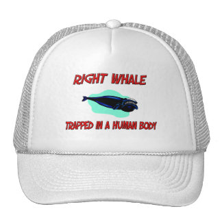 Right Whale trapped in a human body Mesh Hats