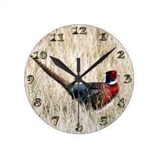 Ring Neck Pheasant in Meadow Clocks