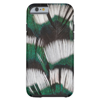 Ring-Necked Pheasant Feathers Tough iPhone 6 Case