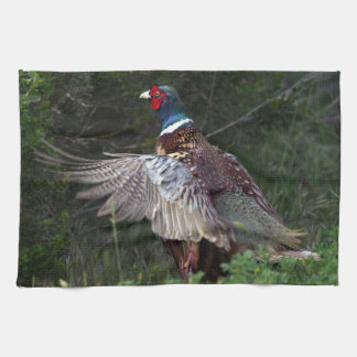 Ring Necked Pheasant Tea Towels