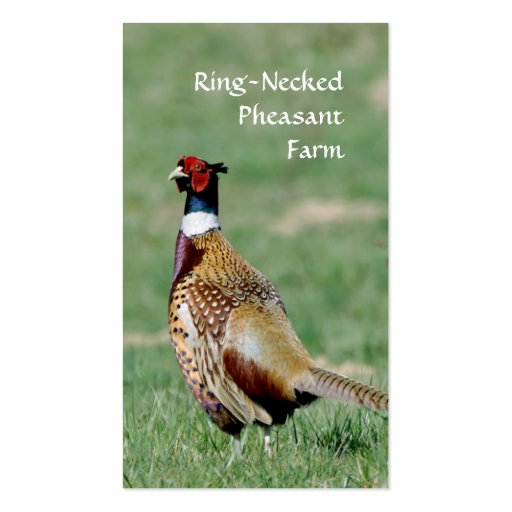 Ring Necked Pheasants business card