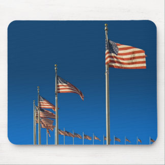 Ring Of  U.S.A. Flags Mouse Pad