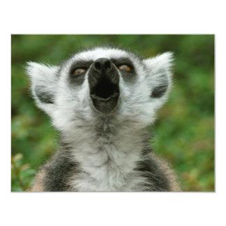 Ring-Tailed Lemur 11 Cm X 14 Cm Invitation Card