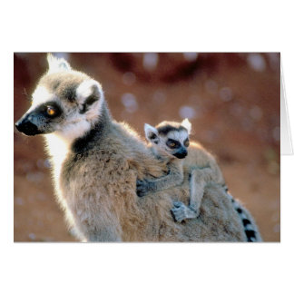 """""""Ring Tailed Lemur And Baby Greeting Card"""