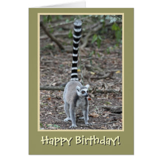 Ring-Tailed Lemur Happy Birthday Greeting Card