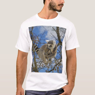Ring-tailed lemur in a tree T-Shirt
