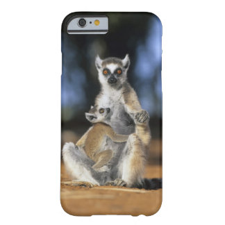 Ring-tailed Lemur, (Lemur catta), Mother and Barely There iPhone 6 Case