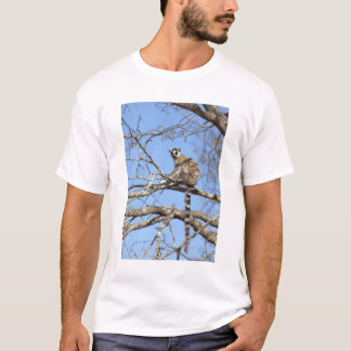 Ring-tailed Lemur (Lemur catta) warming in tree T-Shirt