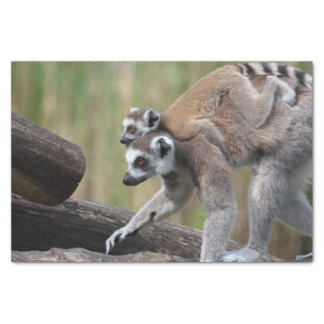 "Ring-Tailed Lemur Mother And Baby 10"" X 15"" Tissue Paper"