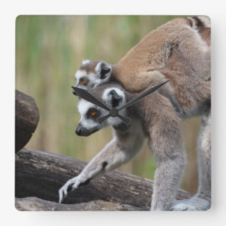 Ring-Tailed Lemur Mother And Baby Wall Clock
