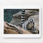 RIng Tailed Lemur Mouse Mat