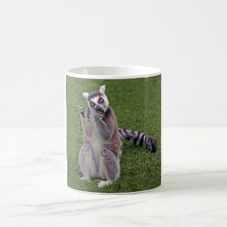 Ring tailed lemur Mug