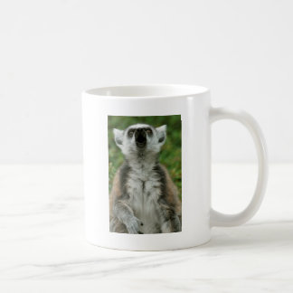 Ring-Tailed Lemur Coffee Mugs