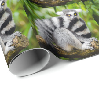 Ring-tailed lemur wrapping paper