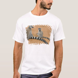 Ring-tailed Lemurs, (Lemur catta), Berenty T-Shirt
