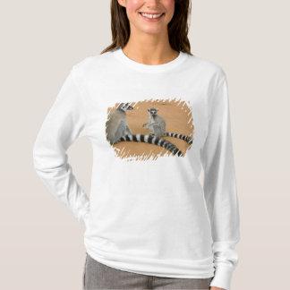 Ring-tailed Lemurs, (Lemur catta), Berenty T-Shirt