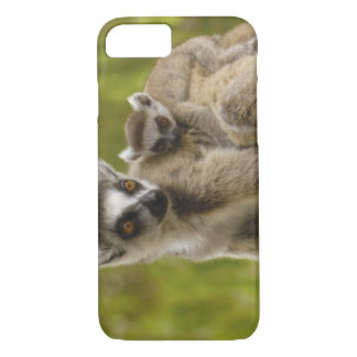 Ring-tailed lemurs (Lemur catta) Mother & baby. iPhone 8/7 Case