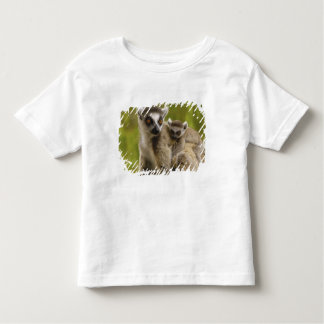 Ring-tailed lemurs (Lemur catta) Mother & baby. T-shirts