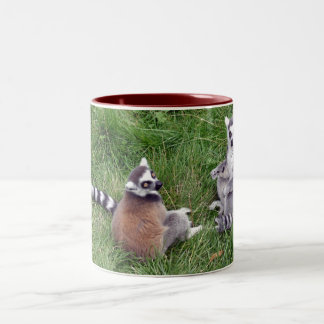 Ring tailed lemurs mug