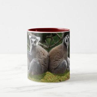 Ring tailed lemurs mug